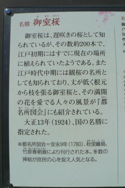 P1720932.jpg