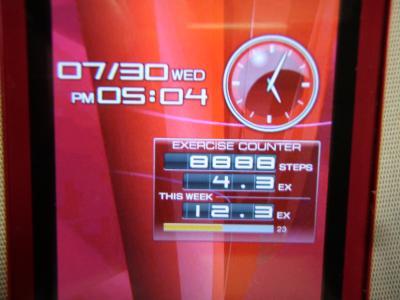 P7300006_convert_20140730191248.jpg