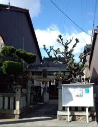 恵美寿神社でお参り