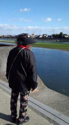 今津川を眺めて