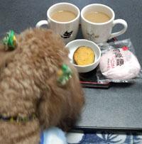 夕方のお茶1