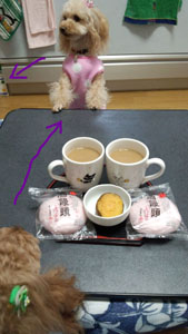 夕方のお茶2