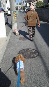 たのしいお散歩4