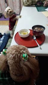 さぁ食べましょう~3
