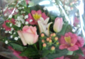 BDに届いたお花8