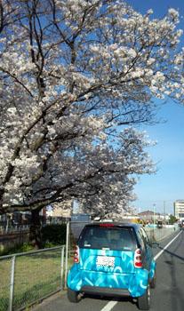 春の公園 b