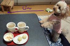 いつものお茶の時間 1
