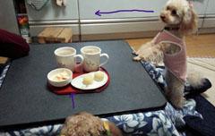 いつものお茶の時間 2
