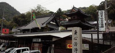 西念寺 鯉のぼり発見