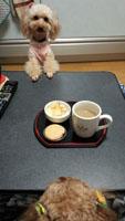 事務所お茶時間 4