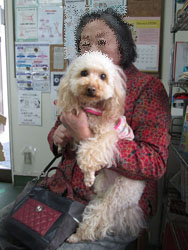 母とNon 春の病院で