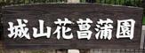 城山花菖蒲園H26 a