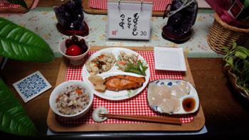晩御飯 鮭・ごぼうと野菜のサラダ・高野豆腐