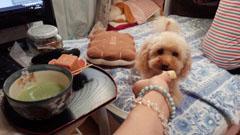抹茶・お芋タイム