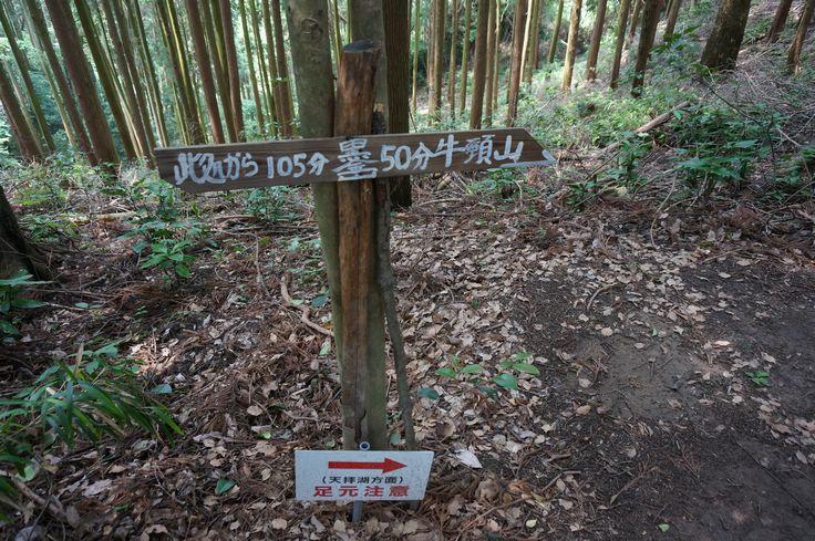 hyoshiki001.jpg