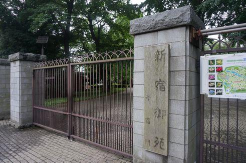 shinjukugyoen001.jpg