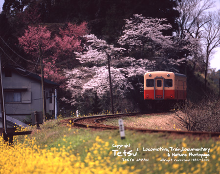 140402高滝-里見002