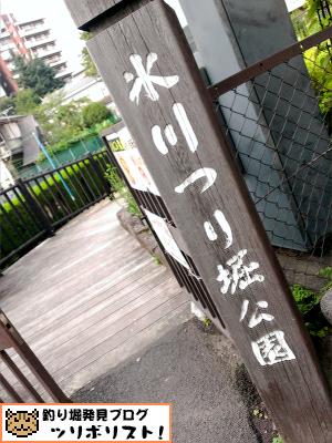 氷川つり堀公園002