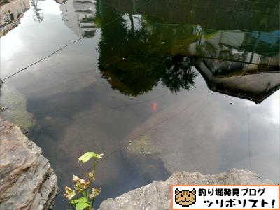 氷川つり堀公園017