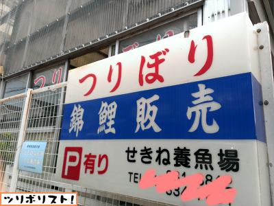せきね養魚場008