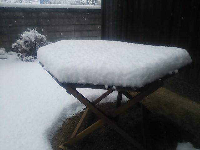 140208 積雪8センチ