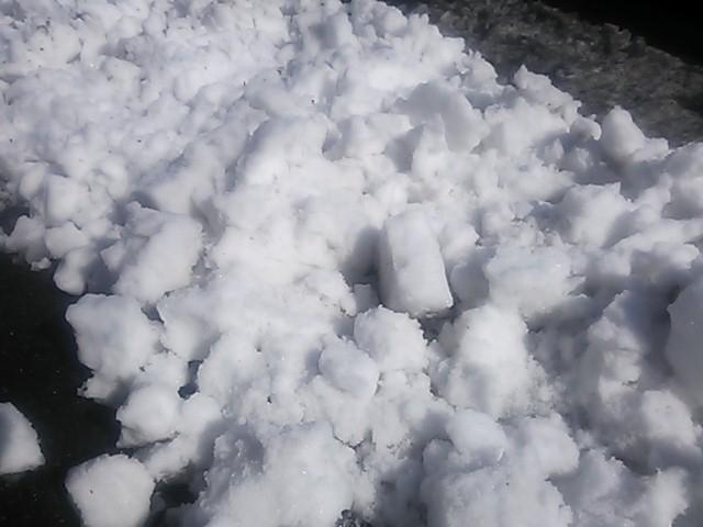 140208 雪消し