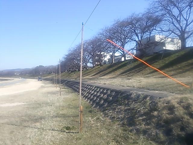 140311 旭川左岸