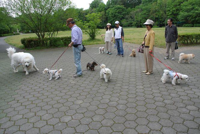 2014長岡公園434