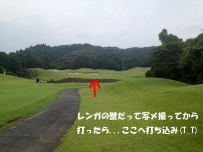 S__6340613.jpg