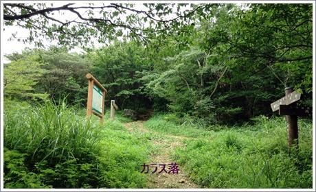 fukuchiyama03.jpg