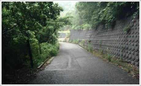 fukuchiyama_kikan06.jpg
