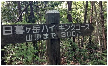 higuregadake21.jpg