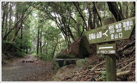 hobashira_hanaoyama03.jpg