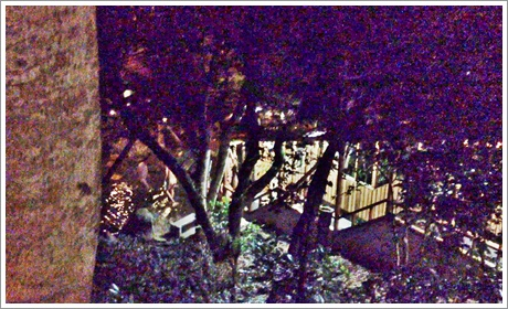 hotel_hisayama11.jpg