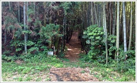 houdaiyama06.jpg