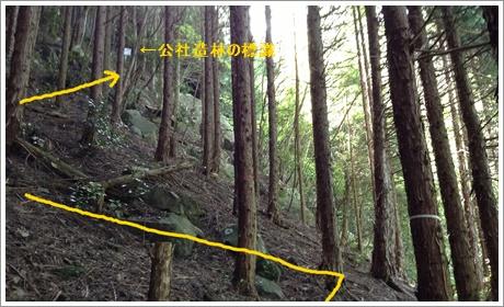 joushouyama10.jpg