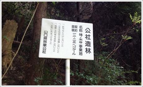 joushouyama12.jpg