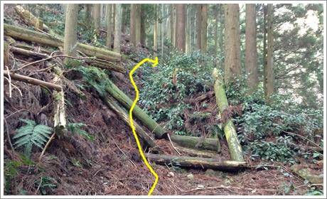 mitsugashira003.jpg