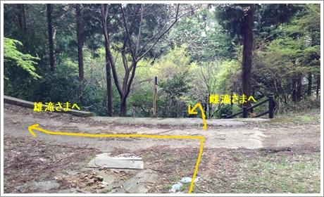 nakayamakei002.jpg