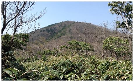 nodoyama04.jpg