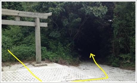 oyama001.jpg