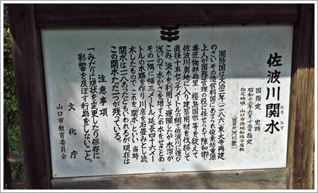 sabagawasekimizu01.jpg