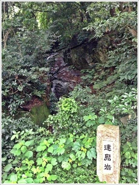 sarakurayama0001.jpg