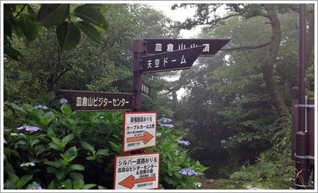 sarakurayama0002.jpg