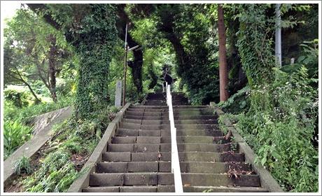 sarakurayama03.jpg
