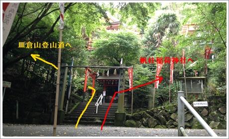 sarakurayama04.jpg