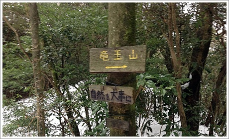 sukisaki004.jpg
