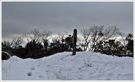 sukisaki008.jpg