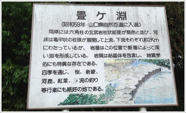 tatamigabuchi01.jpg