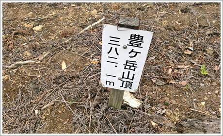 toyogatake048.jpg